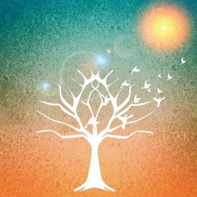 arbre-serenite-sophrologie-stress-corinne-vermillard-lannion-la roche Derrien
