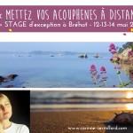 web-stage-acouphenes-brehat-mai-corinne-vermillard-sophrologue