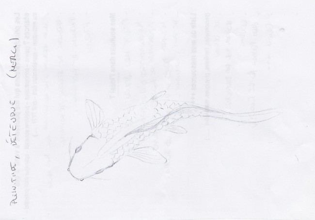Phéno-description- sophrologie-dire-ecrire,dessiner son ressenti-BAC-corinne-vermillard-sophrologue